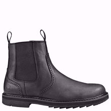 Picture of Timberland Squall Canyon Men's Waterproof Boot